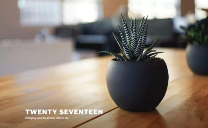 twenty-seventeen theme wordpress